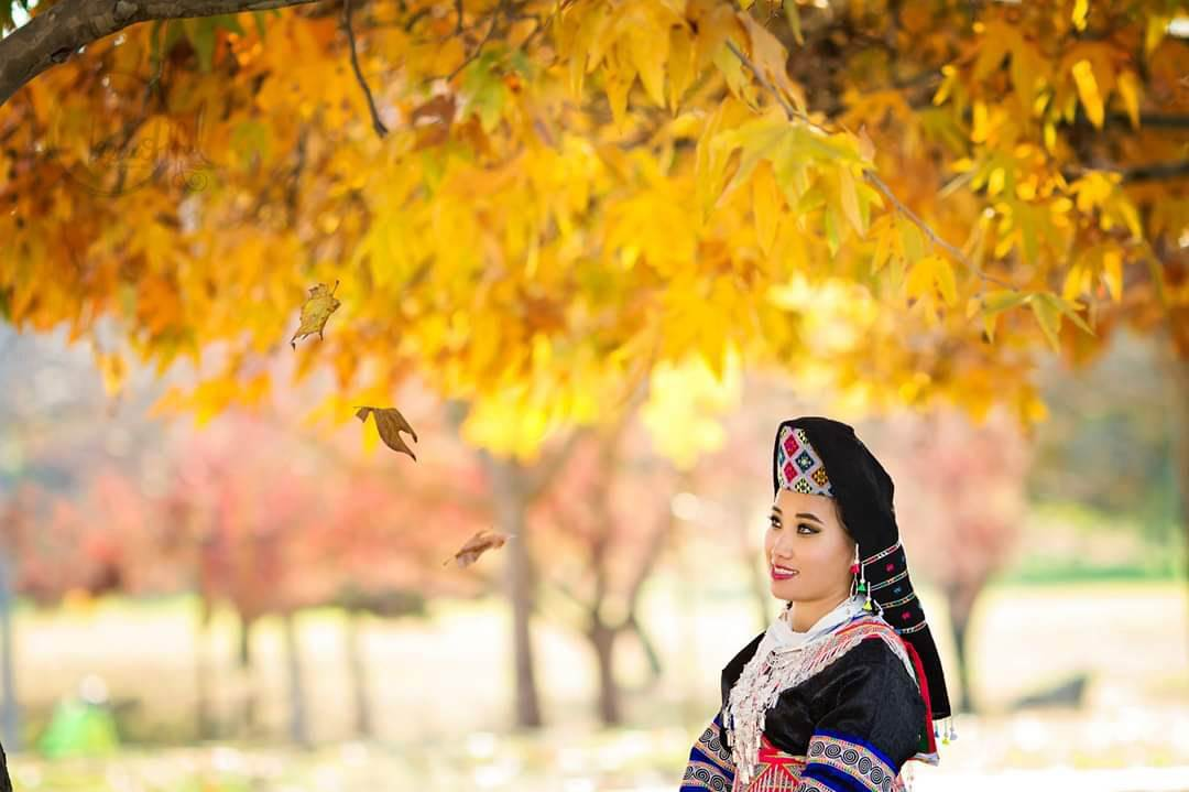 Photo of girl in traditional asian attire with yellow leaves behind her